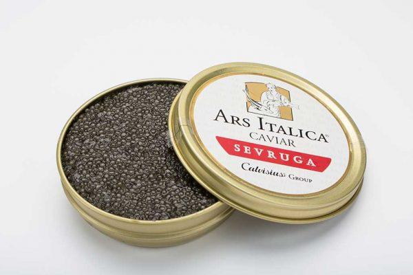 sevruga-royal-caviale-ars-italica