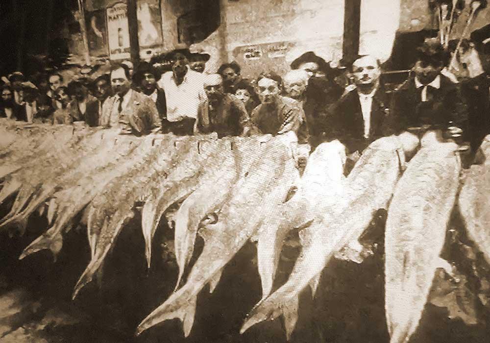 mercato-di-piacenza-anni-30-storioni-ars-italica-italian-caviar-2