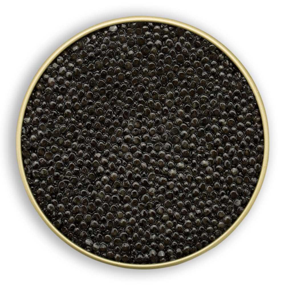 oscietra-royal-caviale-ars-italica-italian-caviar-perlage